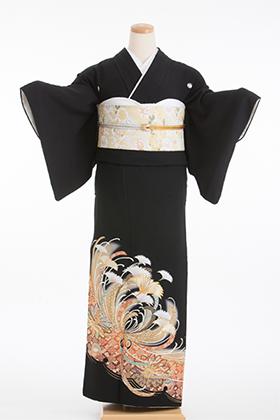 正絹 黒留袖 5紋 120044 のし風柄 に 菊