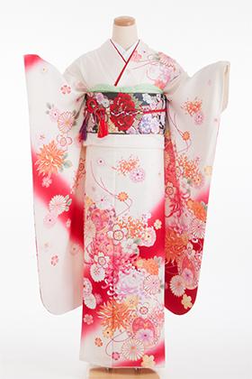 正絹・振袖【2月-12月】140130 ちゃむちゃむ 白 赤ぼかし 菊