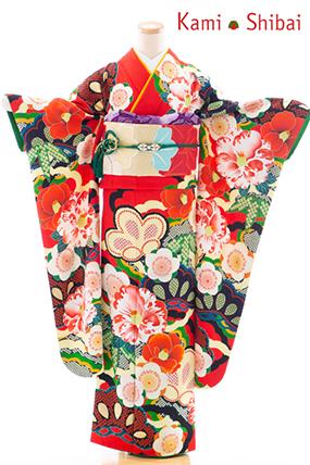 正絹・振袖【2月-12月】140268 NS・かみしばい・赤地 椿に松